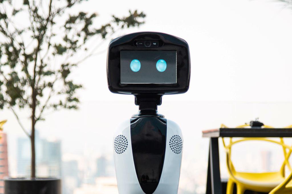 Roomie robot