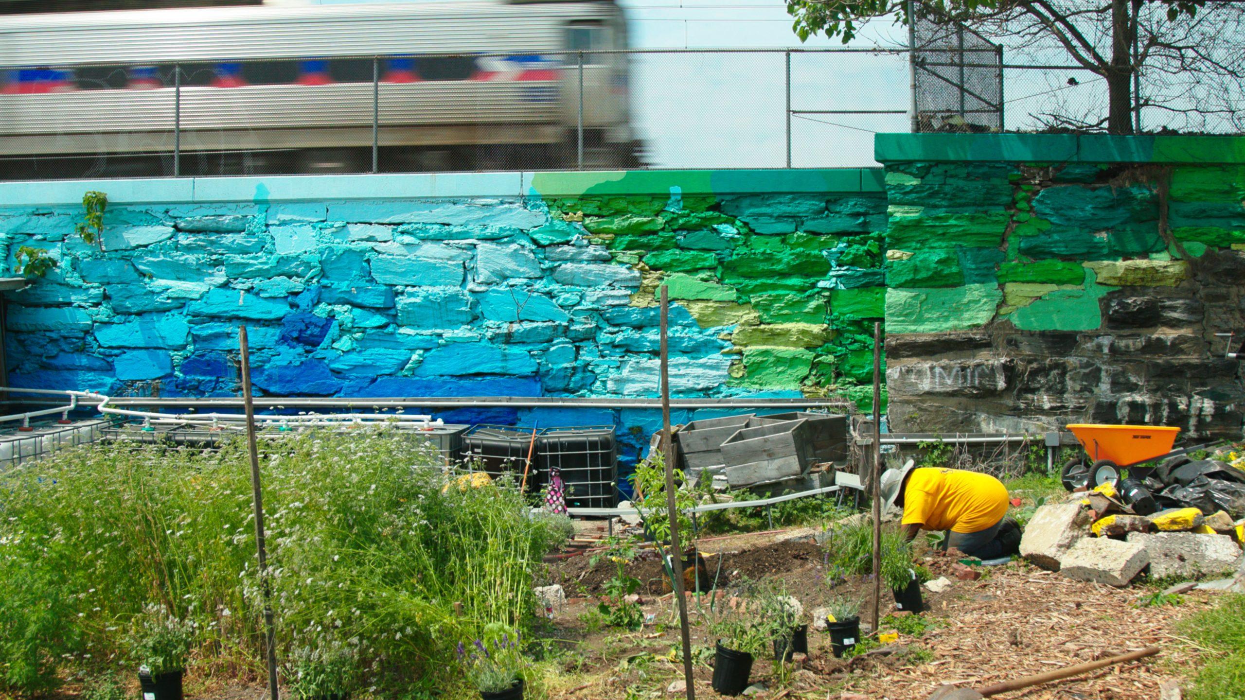 Succulent city film still of wall and garden